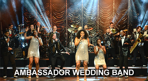 Ambassador Wedding Band
