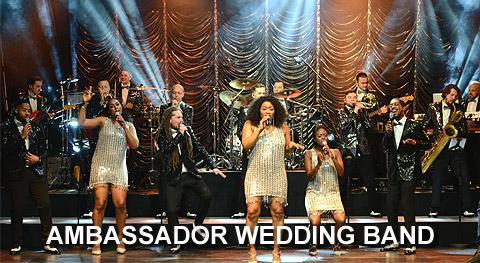 Ambassador Wedding Band